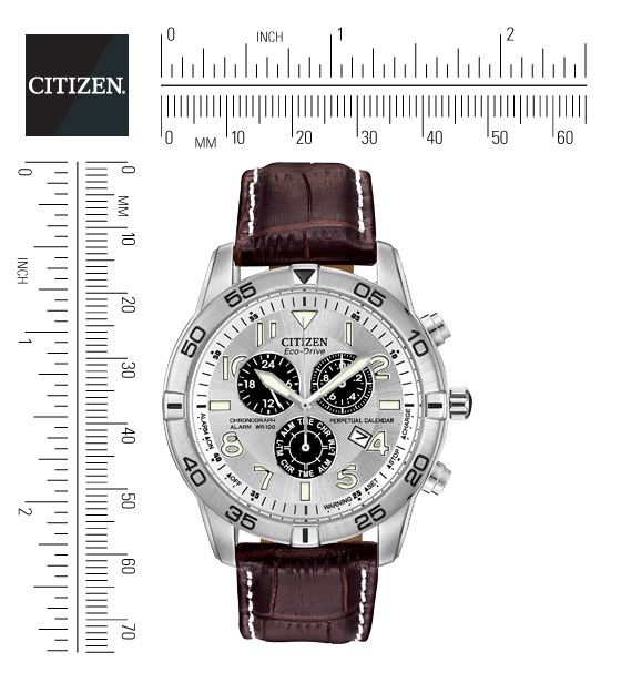 citizen watch perpetual calendar instructions